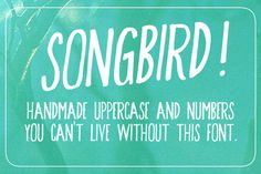 Songbird ~~ There's no denying this font's charm. Songbird is beautiful and you want to use it. Includes the alphabet, numbers, and basic punctuation. (Dollar sign, euro, etc.)