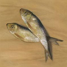 Salted Fish Oil Painting