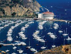 Santa Catalina Island, California  Great diving, Great Food, Great Fun !   My hangout spot in the early 80's <3