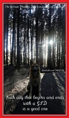 #GSD  how to make every day good
