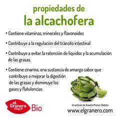 PROPIEDADES DE LA ALCACHOFERA.