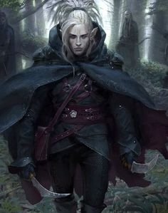 48 Best Male Elf Assassin/Rogue images | Male elf, Rogues