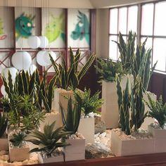 Az élővirágos dekorációk mellett, nagyon szívesen készítek műnövényekből készült dekorációkat is🙃🌿  Minél változatosabb a munkám, én annál jobban imádom😍😍😍  Ez a zöldnövényes dekoráció a Danubius Hotel Bük szállodának készült, ahol a hely adottságaihoz ez az élethű zöldnövény dekoráció passzolt😍  Igazán szuper élmény volt elkészíteni nekik, örülök, hogy ismét engem választottak😁😍 Plants, Plant, Planets