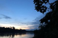 Nighttime – Amazon Rainforest, Peru. The Tambopata River runs through the Amazon rainforest of southeastern Peru. It is one of the most biodiverse areas on the planet and this recording captures the amazing sounds of the jungle at night. Click photo to play authentic sound from www.thetouchofsound.com.