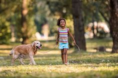Kids and Pet Care: Taking Responsibility for the Family Pet | Beverly Hills Veterinary Associates Blog