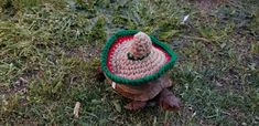 Turtle Hats, Pet Turtle, Baby Tortoise, Tortoise Turtle, Crochet Costumes, Turtle Costumes, More And Less, Tortoises, Cool Items