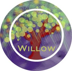 Purple Firefly Willow Tree Personalized by LimeNCoconutDesigns, $22.00  You can also get a bowl to match this beautiful artistic weeping willow firefly plate.  Made of Melamine and dishwasher top rack safe.  Personalize it with a name, initials, or a monogram.