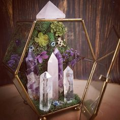 I invite you to take a peek into the newest Crystal Garden kingdom; featuring…