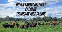 Our next delivery to Calgary is taking place on THURSDAY, JULY 14 2016. We will be meeting with our customers at Cross Iron Mills between 7 and 8PM. After you place your order, we will contact you with more details. We will have our...