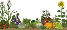 Garden clip art border free free clipart images Vegetable garden beds Garden clipart Vegetable garden