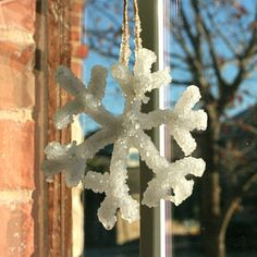 pipe cleaner borax snowflake crystals - Google Search