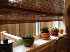 Succulents in Indoor planters - For kitchen ledge