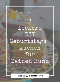 Hunde || Ideen || Hund || Tipps || DIY || Selberbacken || Selbermachen || Kuchen || Geburtstag || Geburtstagskuchen