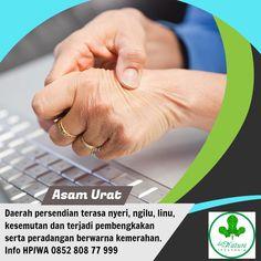 Obat asam urat non herbal Herbalism, Acute Accent, Herbal Medicine