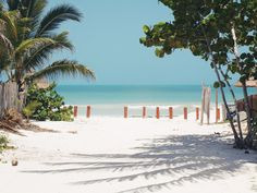 From when I was at Isla Holbox, Mexico.
