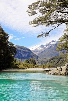 This was our Day on the South Island of New Zealand. We did Dart River Wilderness Safari & Jetboats. The Places Youll Go, Places To See, New Zealand Tours, South Island, Vacation Packages, Travel Destinations, Travel Tips, Wilderness, Safari