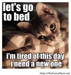 let's go to bed.  i'm tired of this day i need a new one