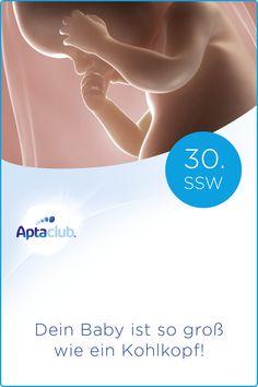 30. SSW: Langsam wird es eng im Bauch. Dein Baby bereitet sich nun auf ein Leben außerhalb deines Bauches vor, indem es sich selbst wärmen kann. Baby, Pregnancy Weeks, Ultrasound, Life, Newborns, Infant, Baby Baby, Doll, Infants