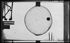 swinglargo:  Lucien Bull Chronophotograph, 1904