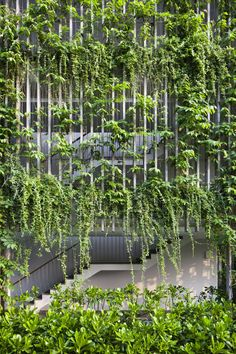 hotel building Plants climb all over vertical concrete louvres surrounding the facades of this holiday resort on the Vietnamese coastline designed by Vo Trong Nghia Architects.