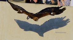 War Damn Eagle !!! Auburn Tigers