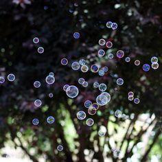 bubbles.....