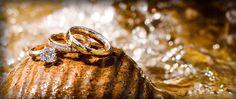 Absolute Wedding films http://www.sc-wedding-videographer-blog.com/