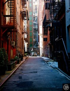 New York, By Alberto Reyes