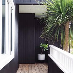 Nest Emporium. Porters Palm Beach Black. Timber beach house. Black house.