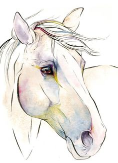 """Items similar to Horse Art: """"July"""", Archival Giclee Watercolor & Ink Painting Reproduction on. - Items similar to Horse Art: """"July"""", Archival Giclee Watercolor & Ink Painting Reproduction on E - Horse Drawings, Animal Drawings, Cool Drawings, Drawing Animals, Pencil Drawings, Painted Horses, Watercolor And Ink, Watercolor Paintings, Watercolor Horse"""