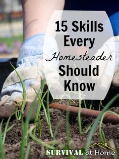 "15 Skills Every Homesteader Should Know. Once upon a time most everyone knew these skills. It's time to return to the ""good ol' days""!"
