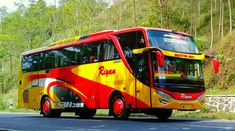 New Bus, Busses, Vehicles, Roads, Car, Vehicle, Tools