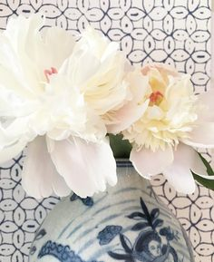 First two Peonies from our yard! Love spring in Nashville! #peonieseason #chinaseaswallpaper #blueandwhite @quadrillefabrics