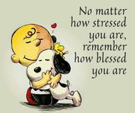 Charlie Brown and Snoopy. Stressed but Blessed. Positive Quotes, Motivational Quotes, Funny Quotes, Inspirational Quotes, Meaningful Quotes, Happy Quotes, Quotes Quotes, Funny Good Morning Quotes, Wife Quotes