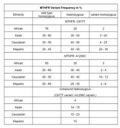 Methylenetetrahydrofolate Reductase (