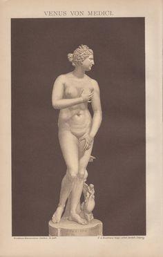 1898 Venus de Medici Antique Print Vintage by Craftissimo on Etsy