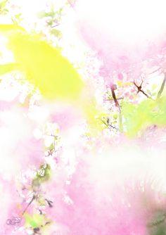 HIKARI06 #watercolor_flowers #OHGUSHI #particles #illustration #水彩 #粒子