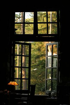 Window onto the woods vista da janela, paisagem da janela, janelas lindas, Window View, Open Window, Window Panes, Looking Out The Window, Through The Window, Cabins In The Woods, Windows And Doors, Big Windows, Black Windows