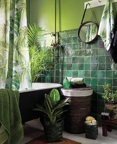 Sehr, sehr clevere kleine Badvorratsideen Voyager-Badezimmer Ich mag nur die P… Very, Very Smart Little Bath Ideas Voyager Bathroom I just like the plants and the hanging towel. Very, very clever small bathroom storage Source by argylekneesocks Tropical Bathroom, Top Bathroom Design, Bathroom Interior Design, Interior, Home, Green Bathroom, Small Bathroom Storage, Small Bathroom, Bathroom Decor