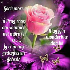 Goeie more roos Good Morning Prayer, Morning Blessings, Morning Prayers, Good Morning Wishes, Day Wishes, Good Morning Quotes, Morning Greetings Quotes, Morning Messages, Lekker Dag