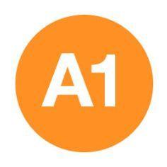 Débutez en français avec les exercices de Première Classe (niveau A1).