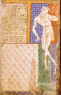 """Zodiacal Man from """"The Catalan Atlas"""", century (BnF, Esp Medieval Manuscript, Illuminated Manuscript, Book Catalogue, Anthropologie, Bnf, Modern Times, 14th Century, Middle Ages, Astrology"""