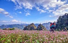 Thuexetaihanoi.vn: Hoa Mai - đưa bạn đến với vùng đất xinh đẹp Hà Gia...