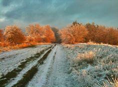 The Ridgeway | East Hendred | Oxon