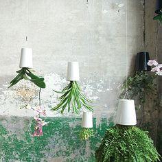 Set of 3 Ø9 Ceramic Planters by Boskke | MONOQI