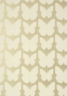 ALDORA, Champagne Pearl, T11049, Collection Geometric Resource 2 from Thibaut