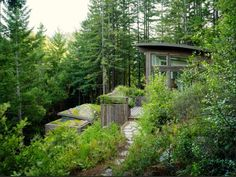 On a steep, wooded lot in Mill Valley, California, two studio spaces exist in harmony with the surrounding land.