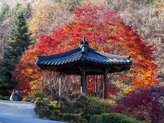 Lua de mel | Destinos no Hemisfério norte para curtir o outono - Portal iCasei Casamentos