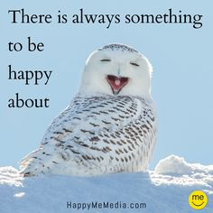 Happiness Quotes to Share on Facebook! www.facebook.com/... Get more happy www.happymemedia.com { HappyMeMedia Pinterest Quotes Pinterest Happiness Quotes Happy Quotes Inspirational Quotes Facebook Quotes Happy Quotes Pet Quotes Funny Quote Pinterest Tips } www.happymemedia.com