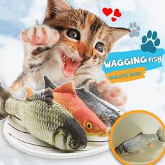 Wagging Fish Cat Toys Realistic Plush Kitten Toys Simulation Catnip Soft Gift for Pet Chewing Cute Kitten Gif, Kittens Cutest, Cats And Kittens, Ragdoll Cats, Kitty Cats, Kitten Toys, Cat Toys, Grass Carp, Fish Cat Toy